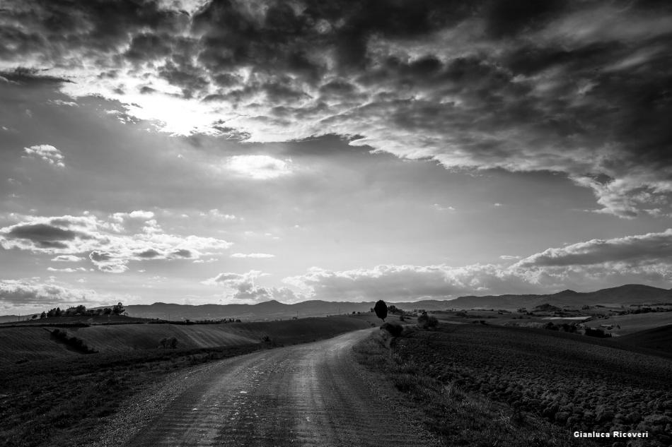 Tuscany's hills in B&W # 20