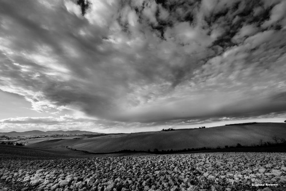 Tuscany's hills in B&W # 21