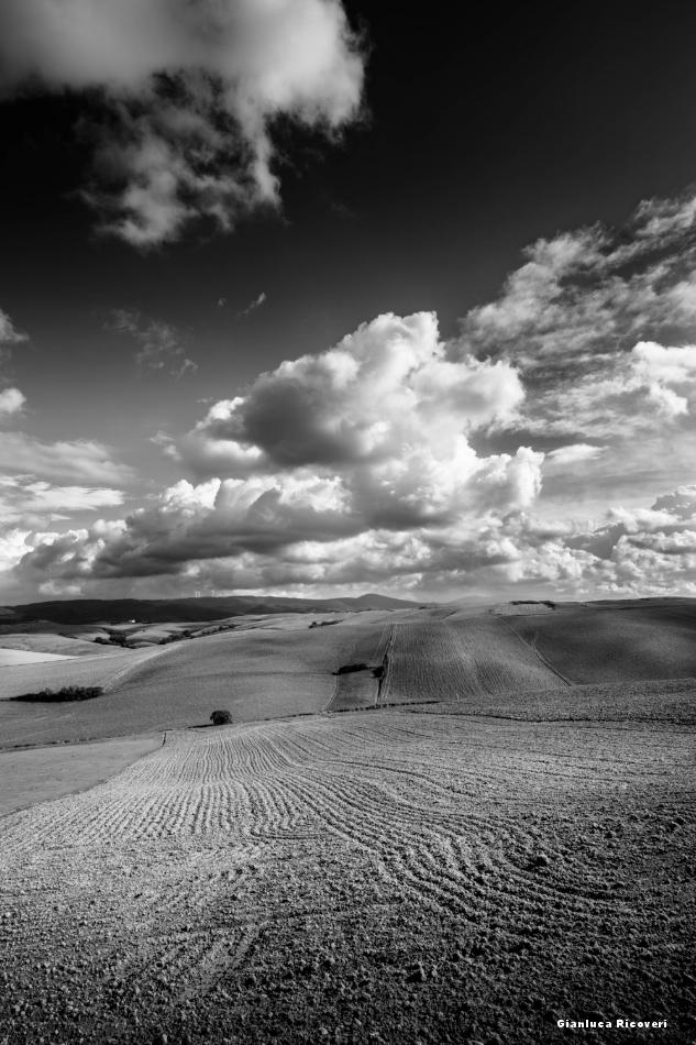 Tuscany's hills in B&W # 25