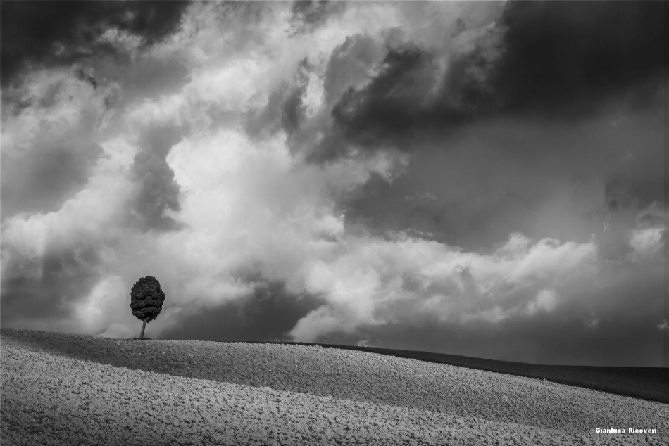 Tuscany's hills in B&W # 34