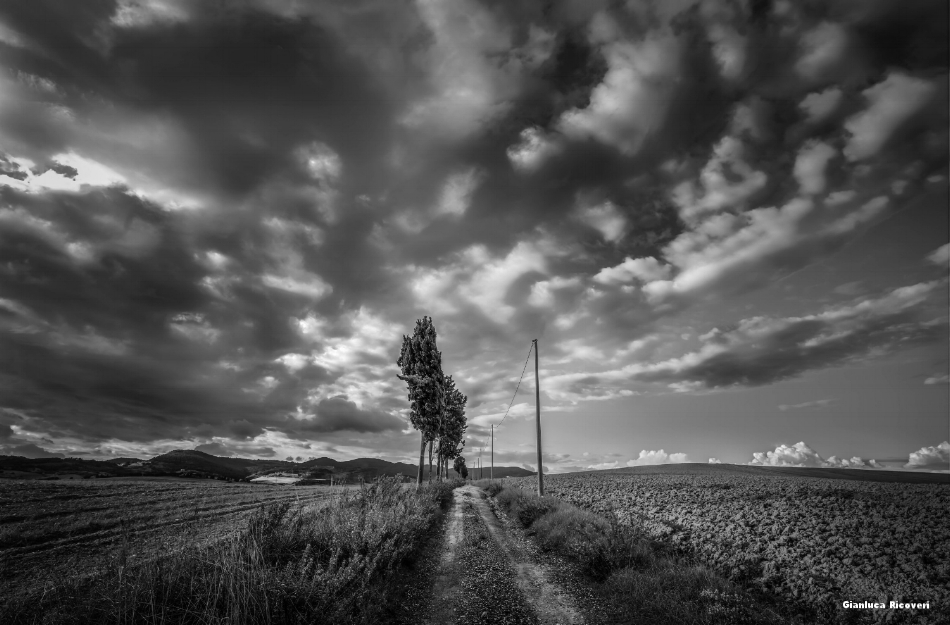 Tuscany's hills in B&W # 39