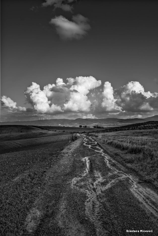 Tuscany's hills in B&W # 43