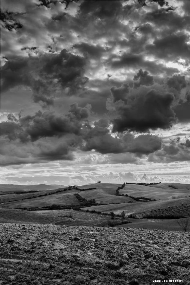 Tuscany's hills in B&W # 45