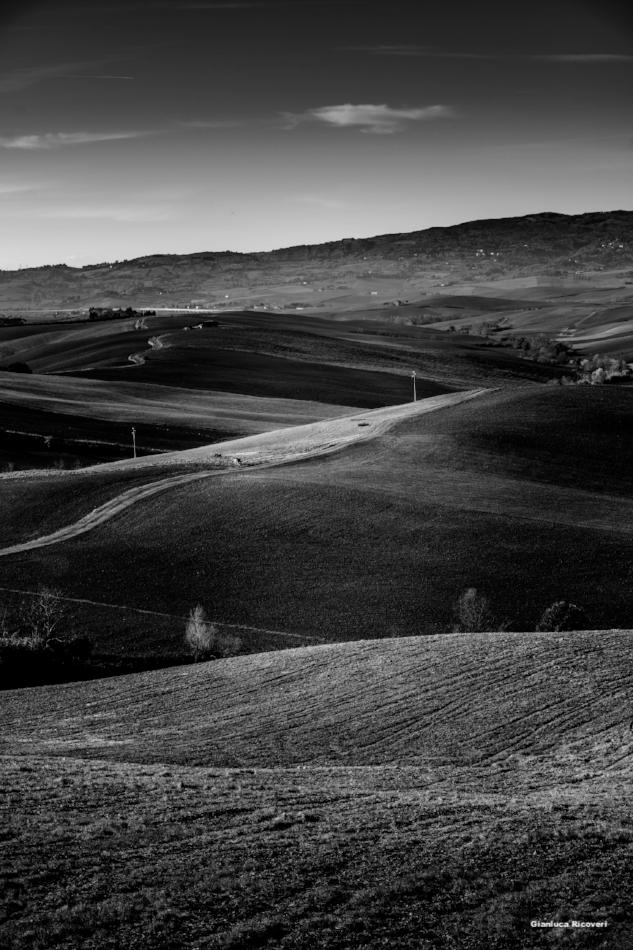 Tuscany's hills in B&W # 49