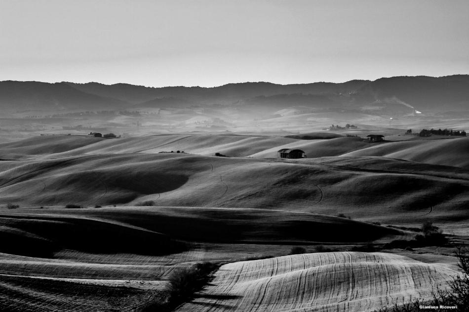 Tuscany's hills in B&W # 50