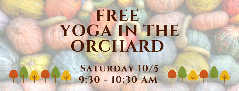 yoga at the orchard.png