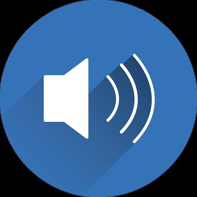 speaker-2488096_640.png