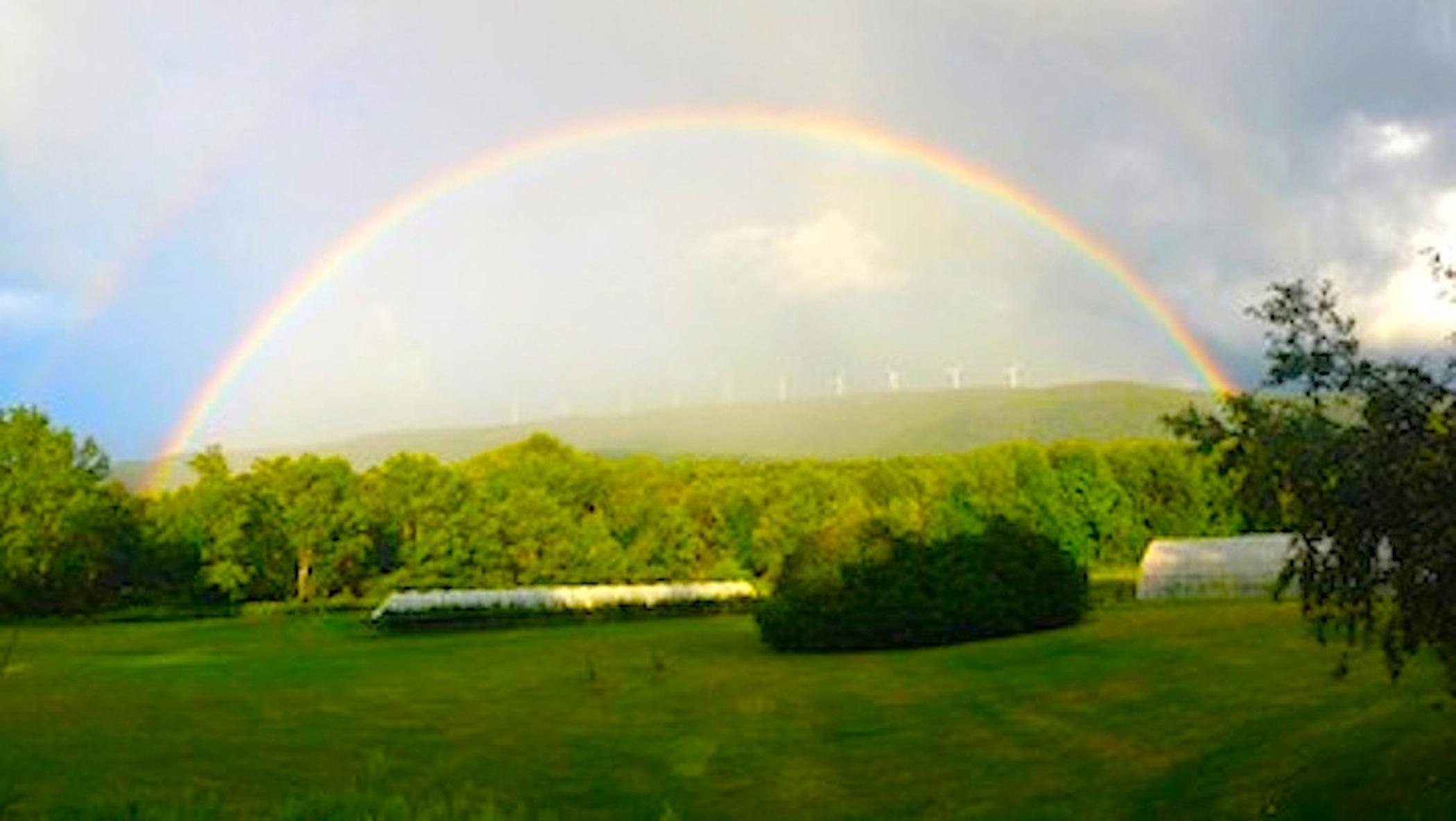 Many Forks rainbow.jpg