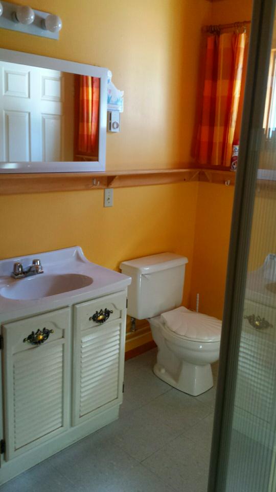 Pine Haus Washroom.png