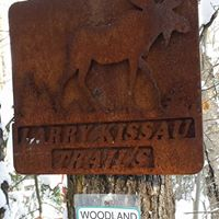 Kissau Trails.jpg