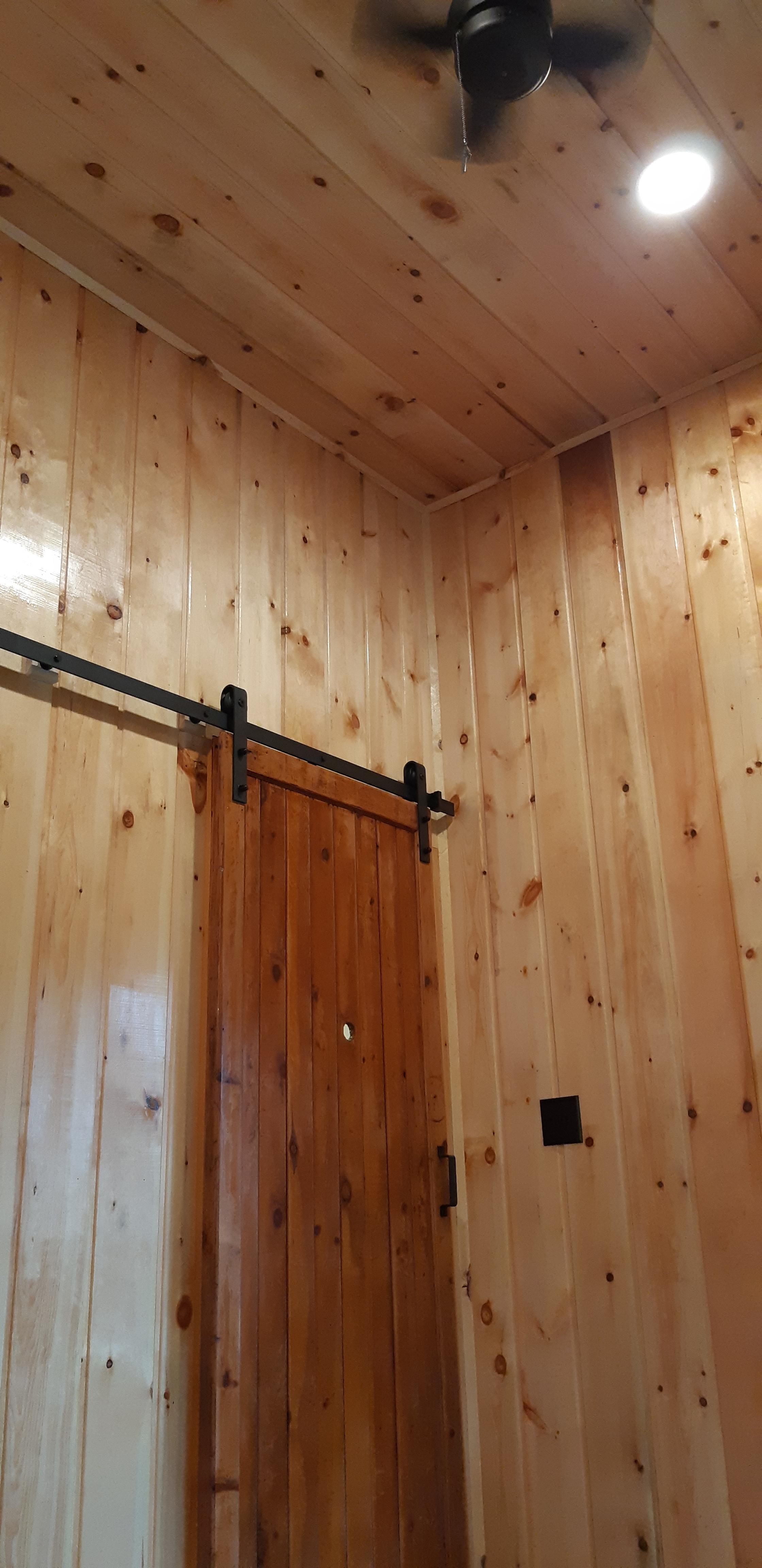Ladybug Vaulted LRoom Ceiling.jpg