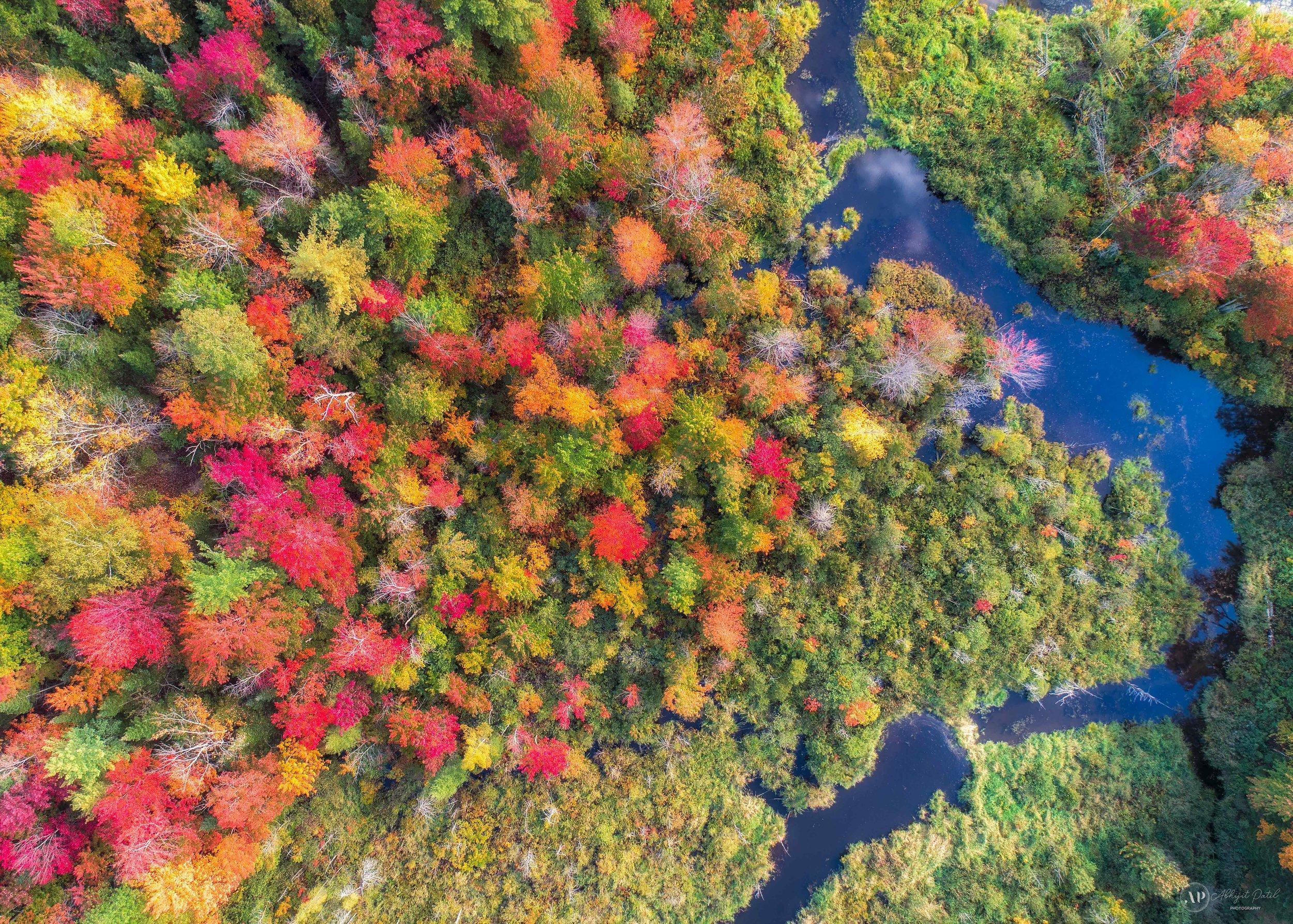 Vermont_1_09_29_2019.jpg