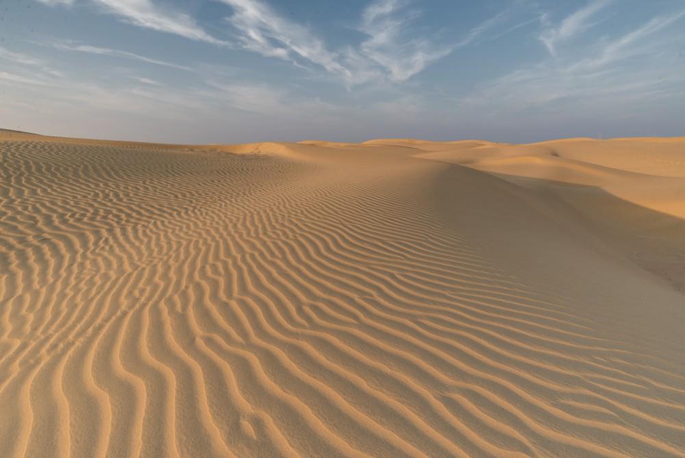 Thar Desert_tn.jpg