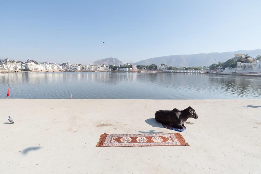 Pushkar lake (2)_tn.jpg