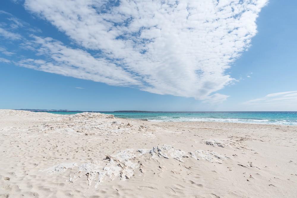 Formentera D04_6282_tn.jpg