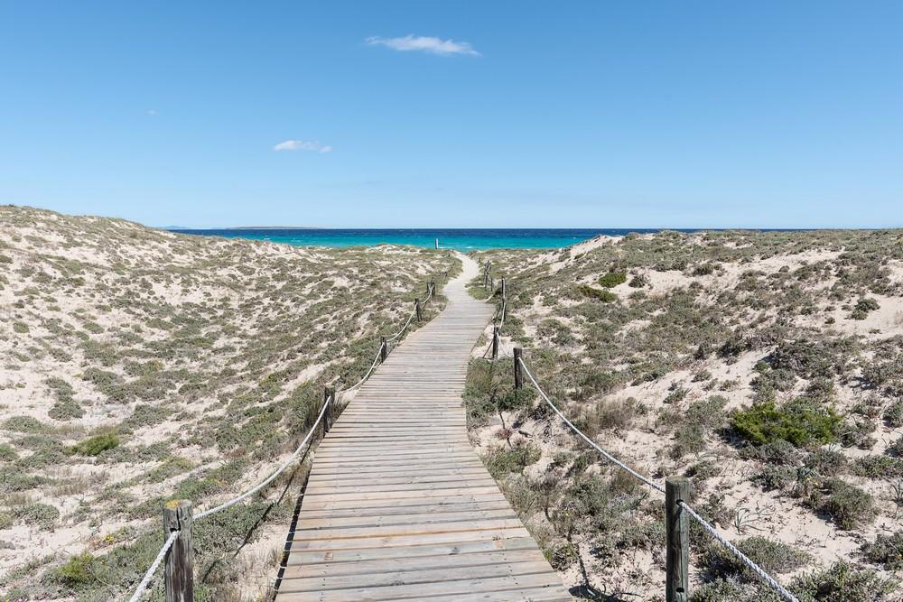 Formentera D04_6402_tn.jpg