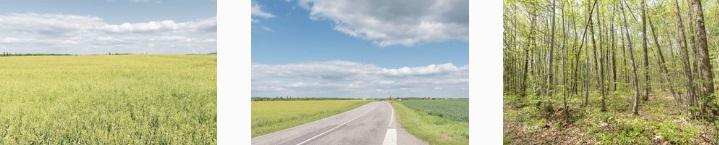 memorama countryside 1.jpg