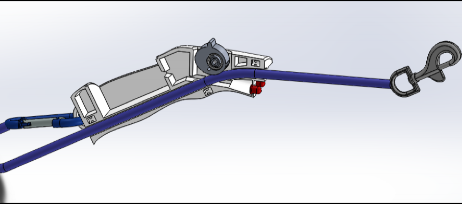 Leash Assembly: Cross Section