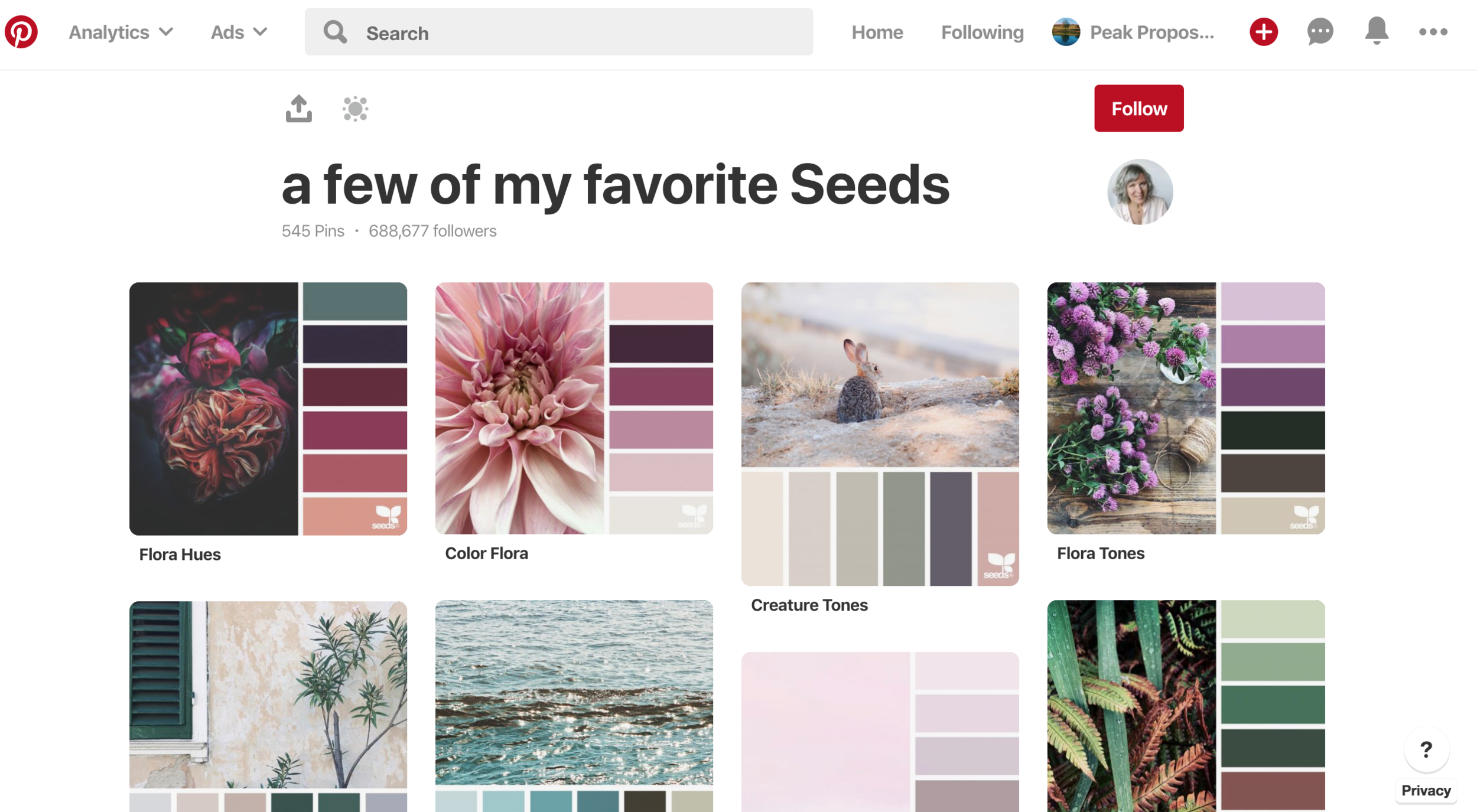 Screenshot of the  Design Seeds Pinterest account