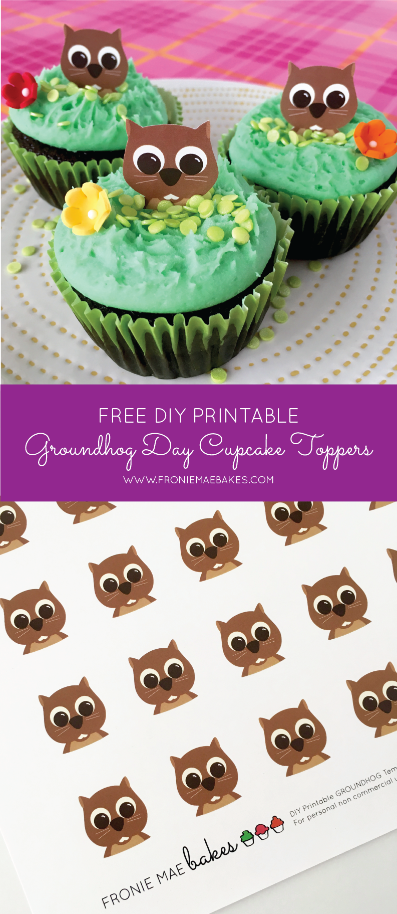 Make fun Groundhog's Day cupcake toppers with our FREE DIY printable Groundhog cupcake toppers. Get the file here: www.froniemaebakes.com