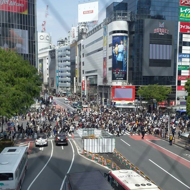 Days 3 and 4. Shibuya, more sweets, more ramen, pong, and Mt Fuji.