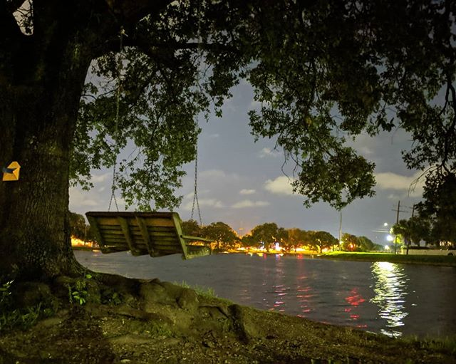 Goodbye, New Orleans. Among many things, will miss swinging under this tree on the bayou, watching the world stay still.