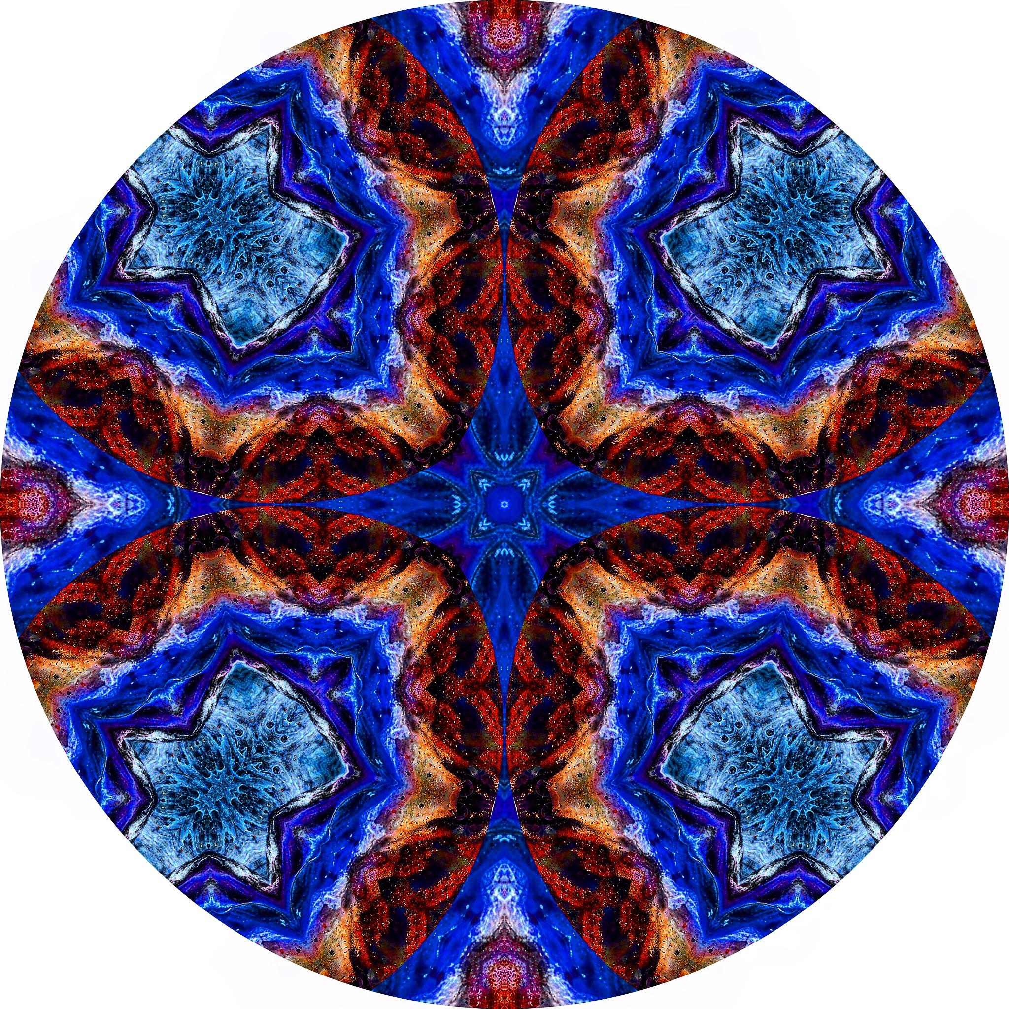 File Coral #A 8.JPG