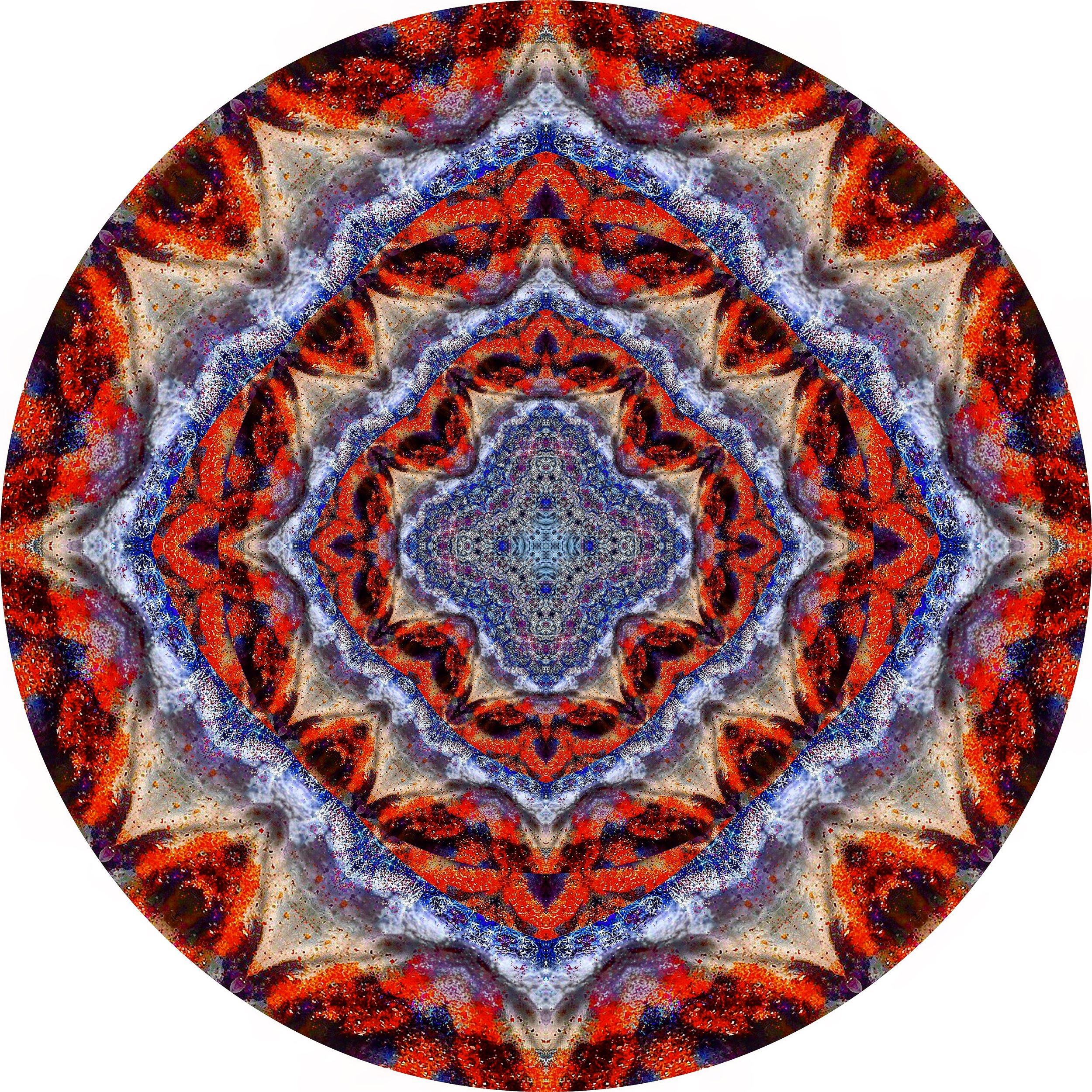 File Coral #A 18.JPG