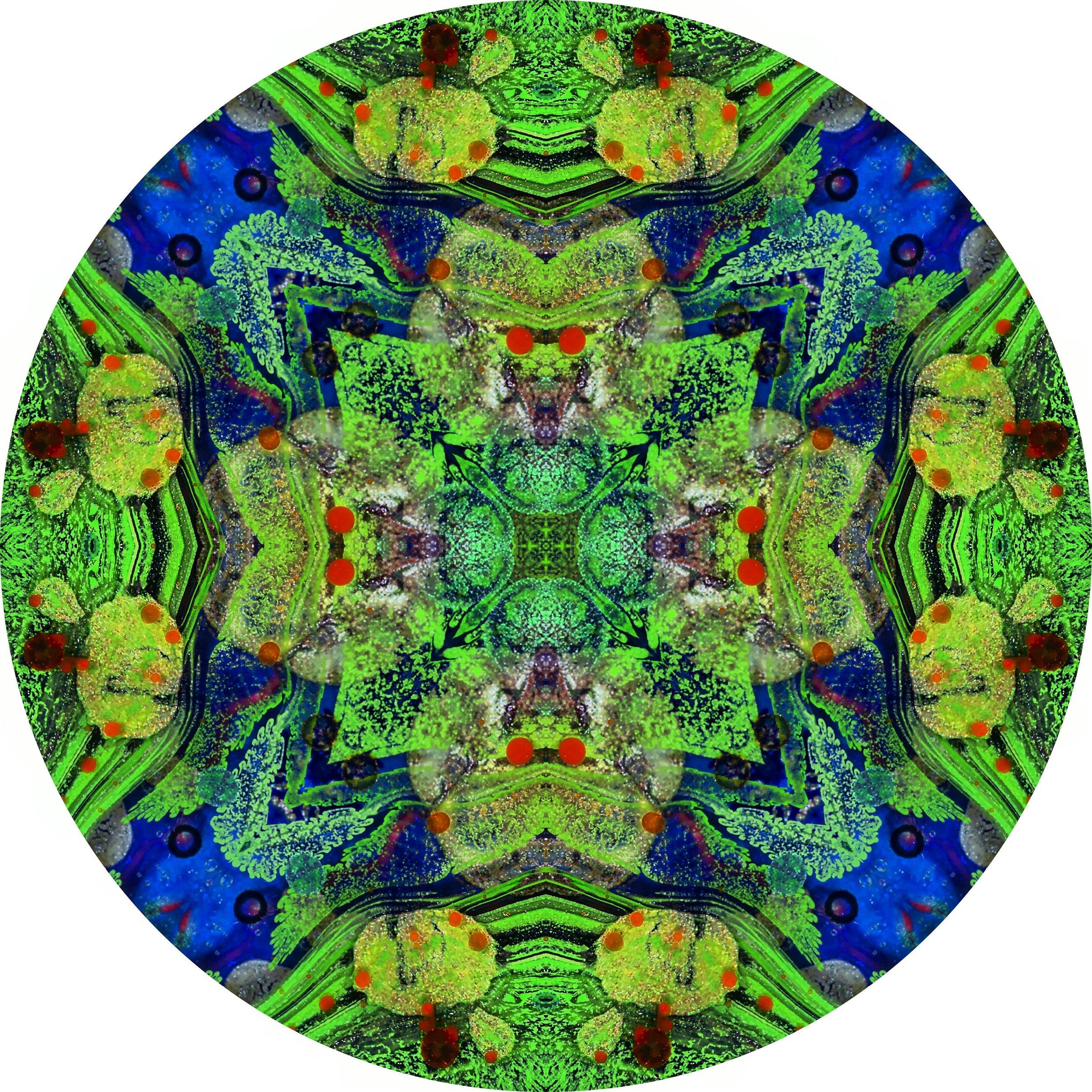 Green Galaxy #A 3.JPG
