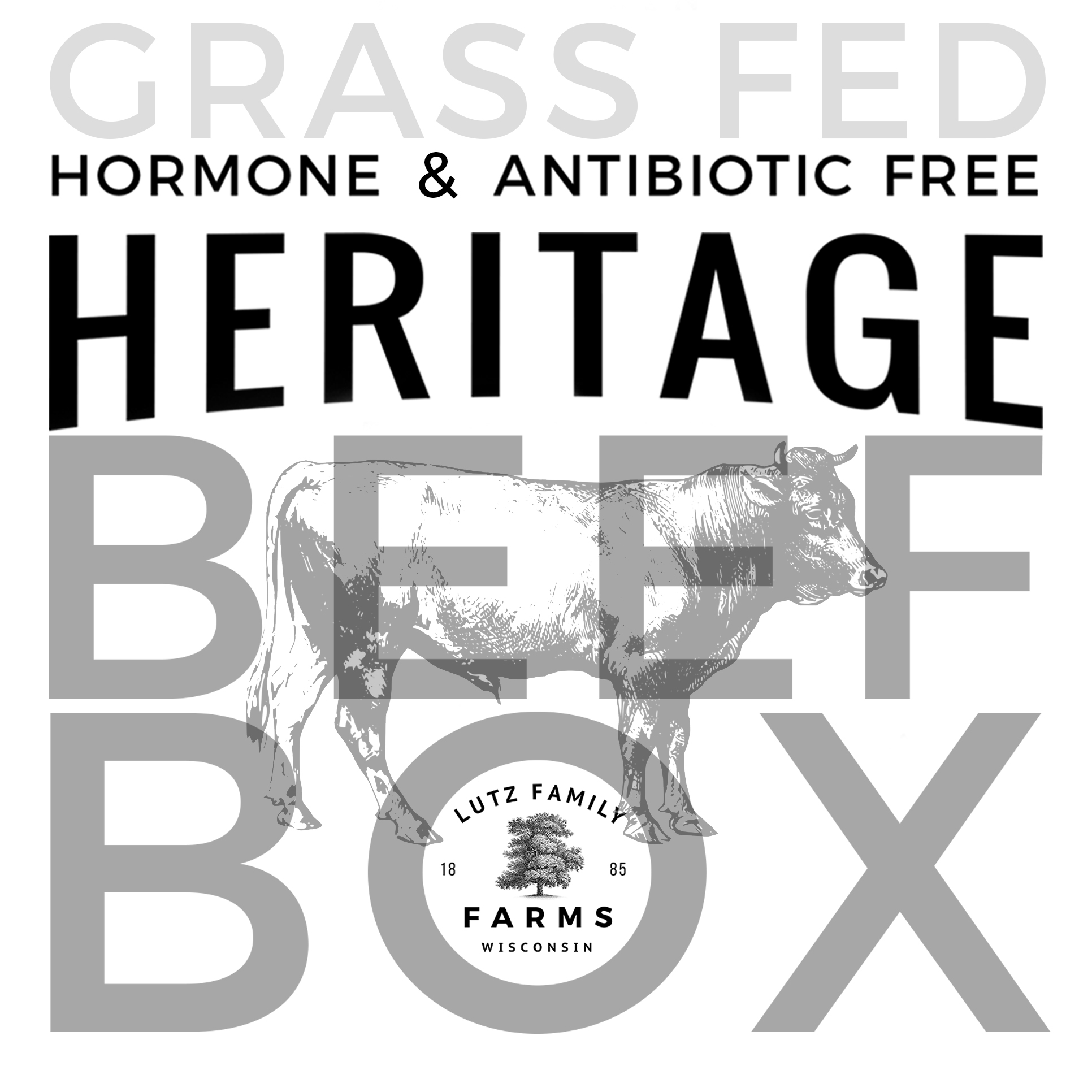 Wisconsin Locally Grown Grass Fed Hormone and Antibiotic Free Beef Shipped Directly to your door