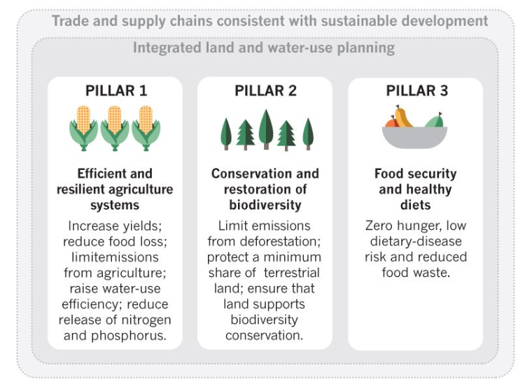What it would take to change the food system. Schmidt-Traub et al 2019 nature