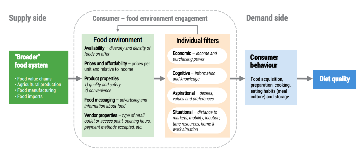 Food Environment Framework showing supply and demand. Source: Marshall et al 2019 UNSCN report