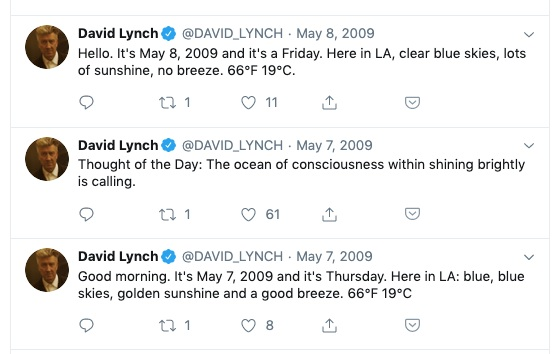 Lynch's annoying twitter feed