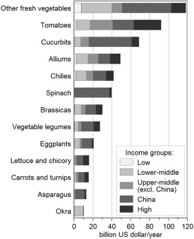 Farmgate value of global vegetable production by income groups of countries, average 2012–2013, current US dollars (Source: Schreinemachers et al 2019 GFS Journal)
