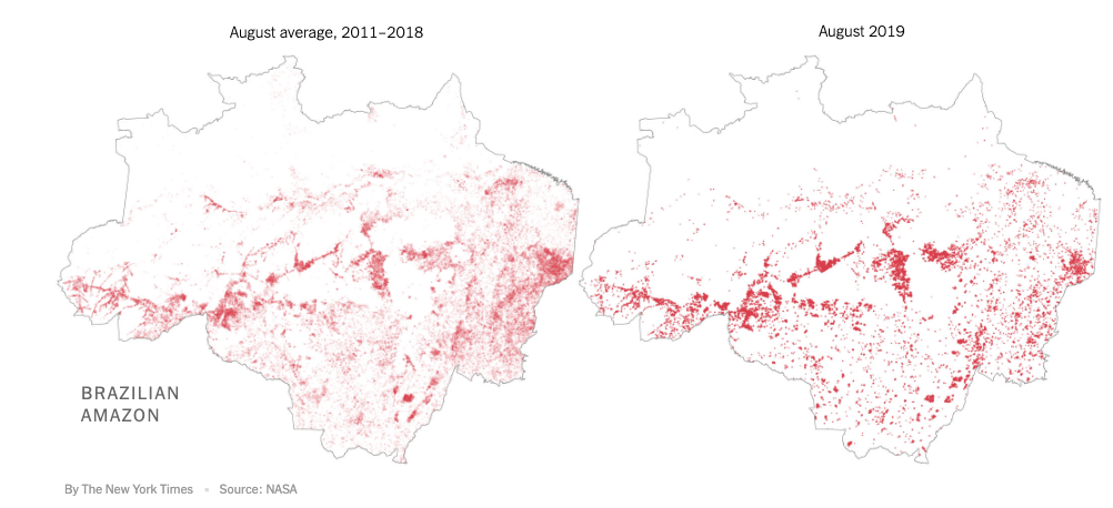 Fires in the Brazilian Amazon. Source: NYTIMES