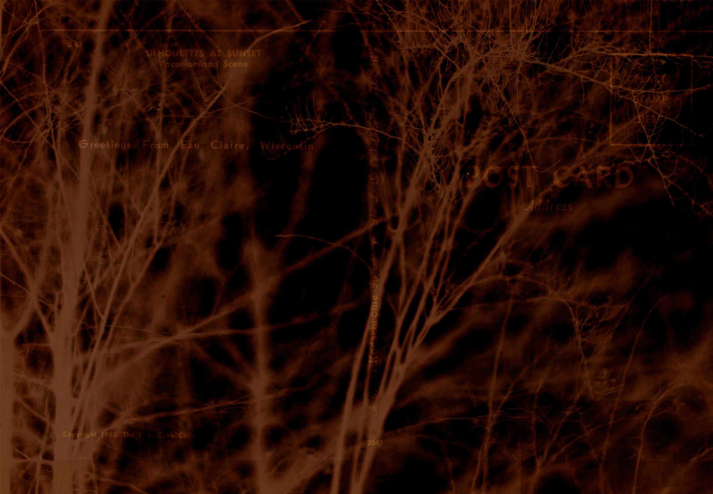 Untitled-2-1.jpg