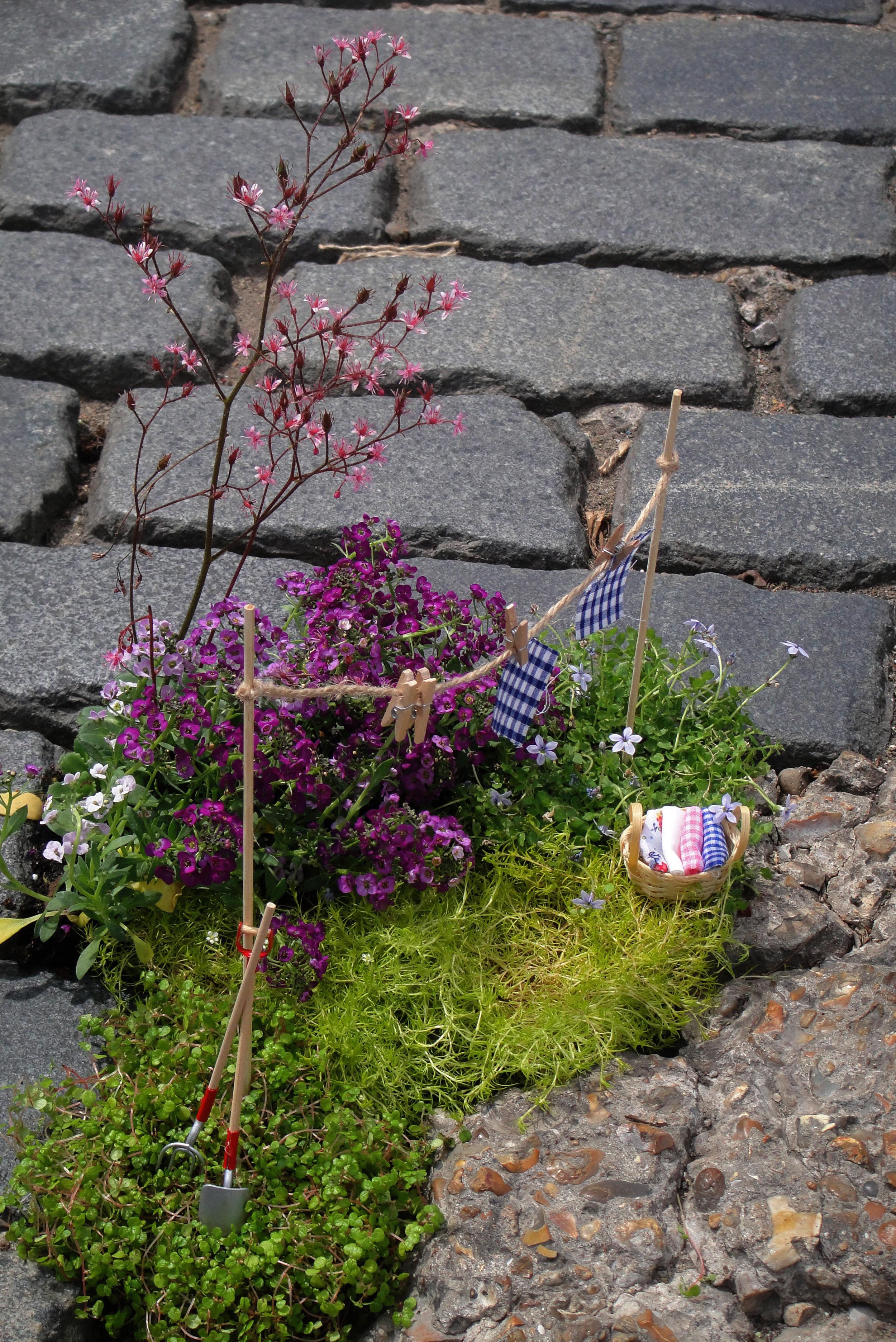 Pothole garden East London Guerilla Gardening Steve Wheen Clothes Line