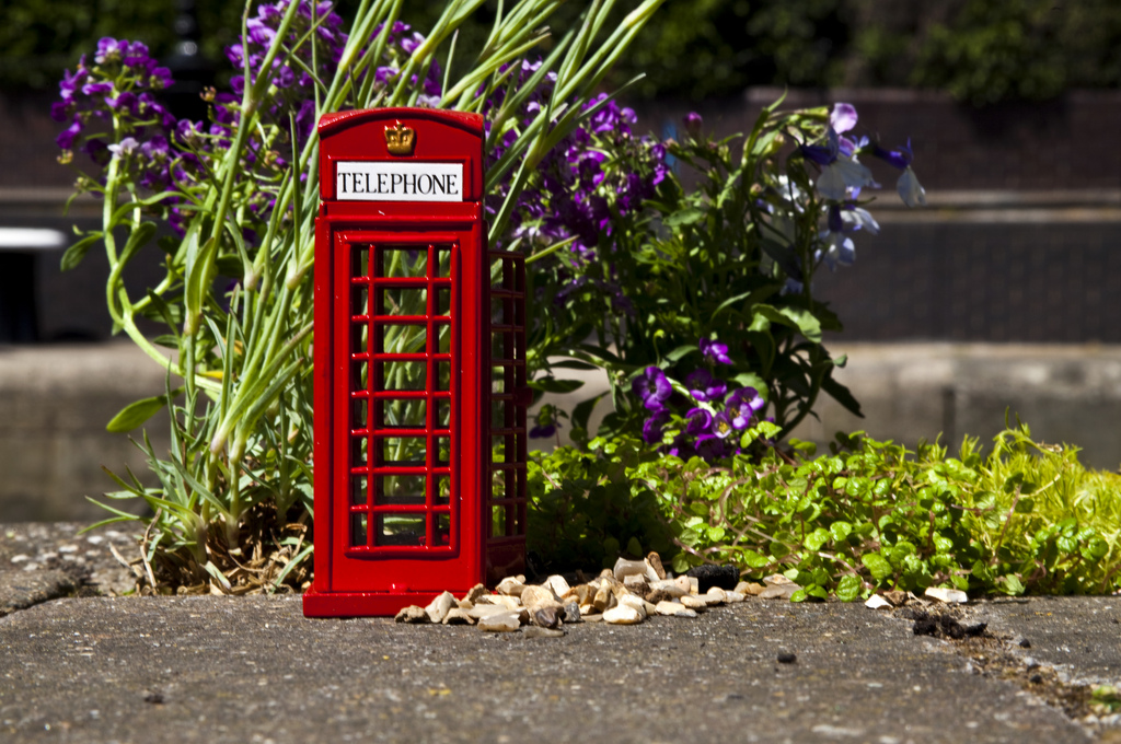 pothole garden tower bridge london phone box small