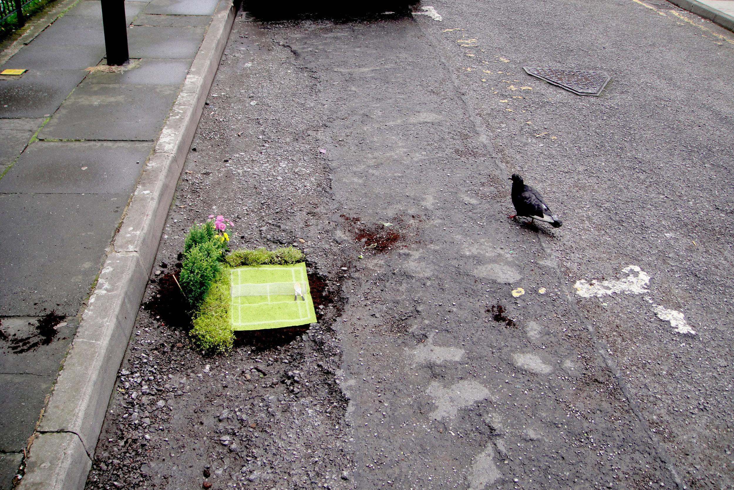 wimbledon tennis London pothole garden pigeon