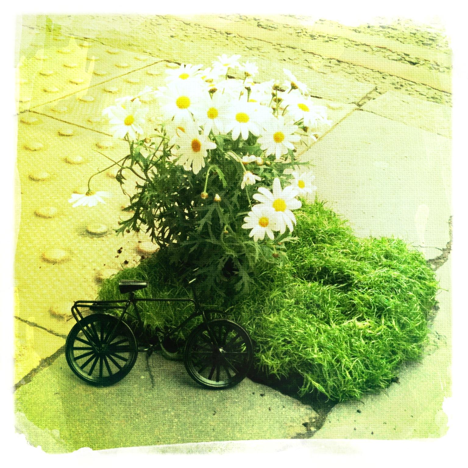 pothole garden bike south london mini garden road
