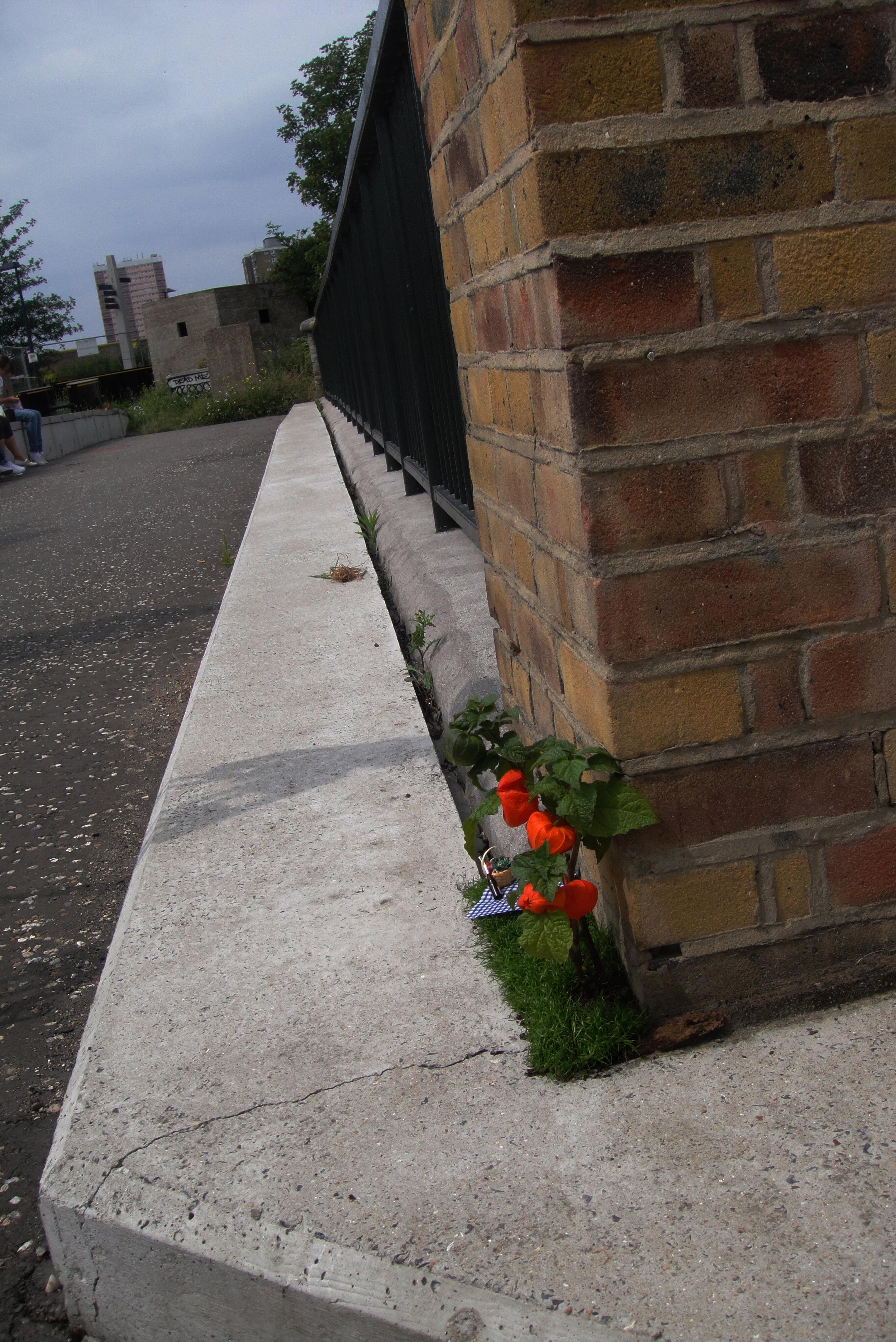 Pothole gardener Story Worldwide Westfield Stratford Opening Steve wheen