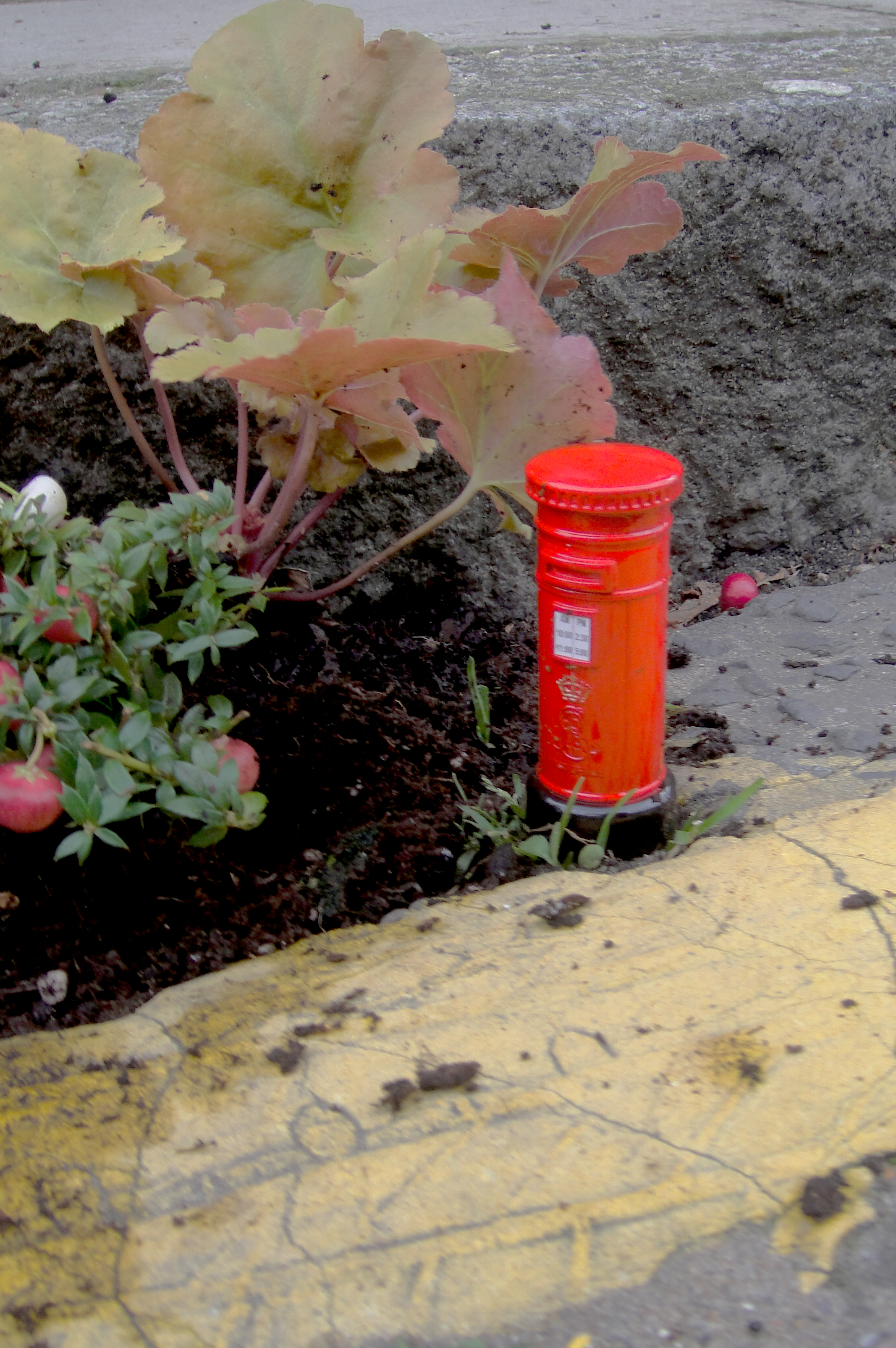 pothole-garden-royal-post-post-box-east-london-cu.jpg