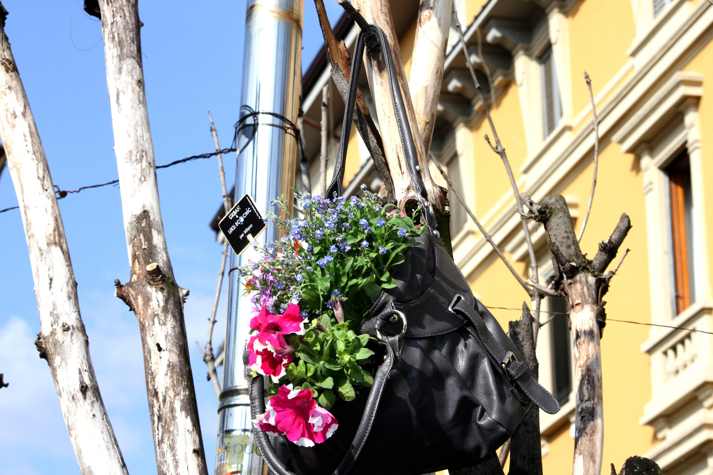 Pothole gardener at Milan Design Week garden in a bag