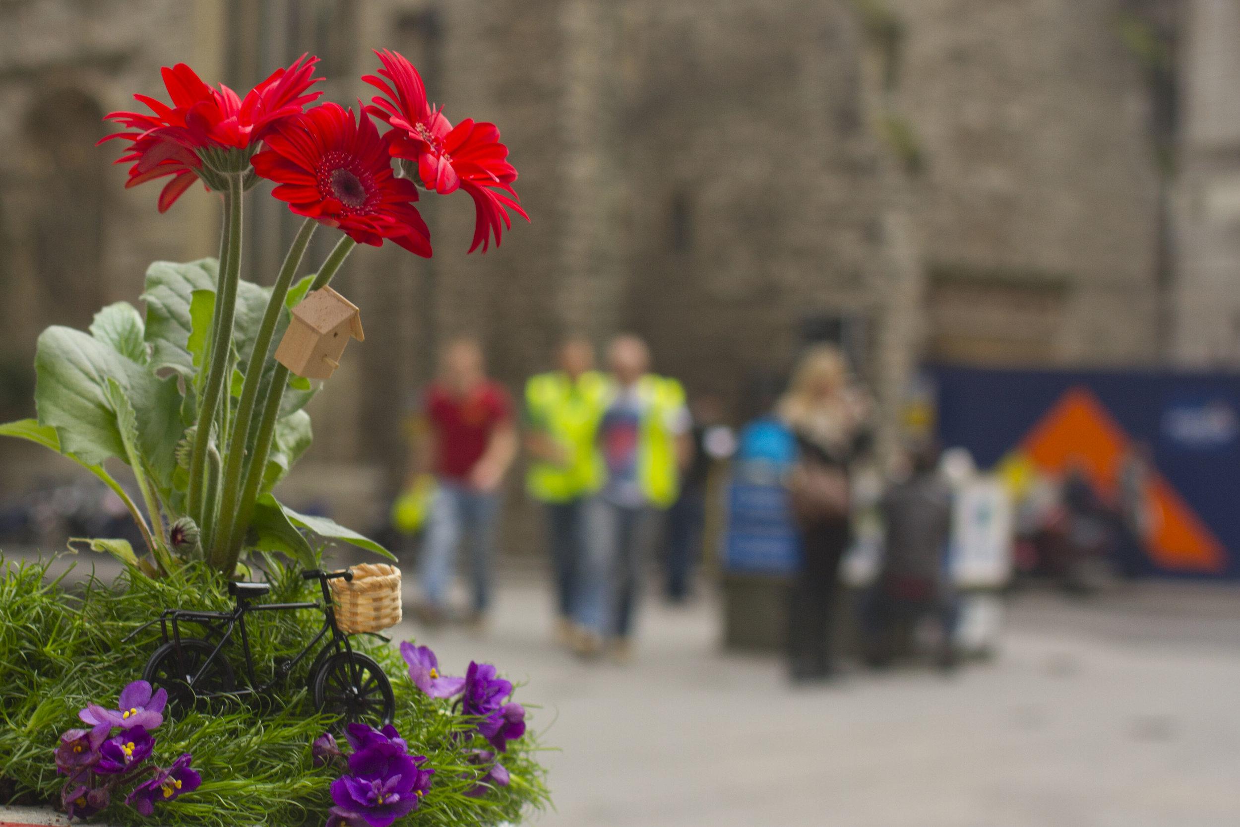 The pothole gardener Barbican