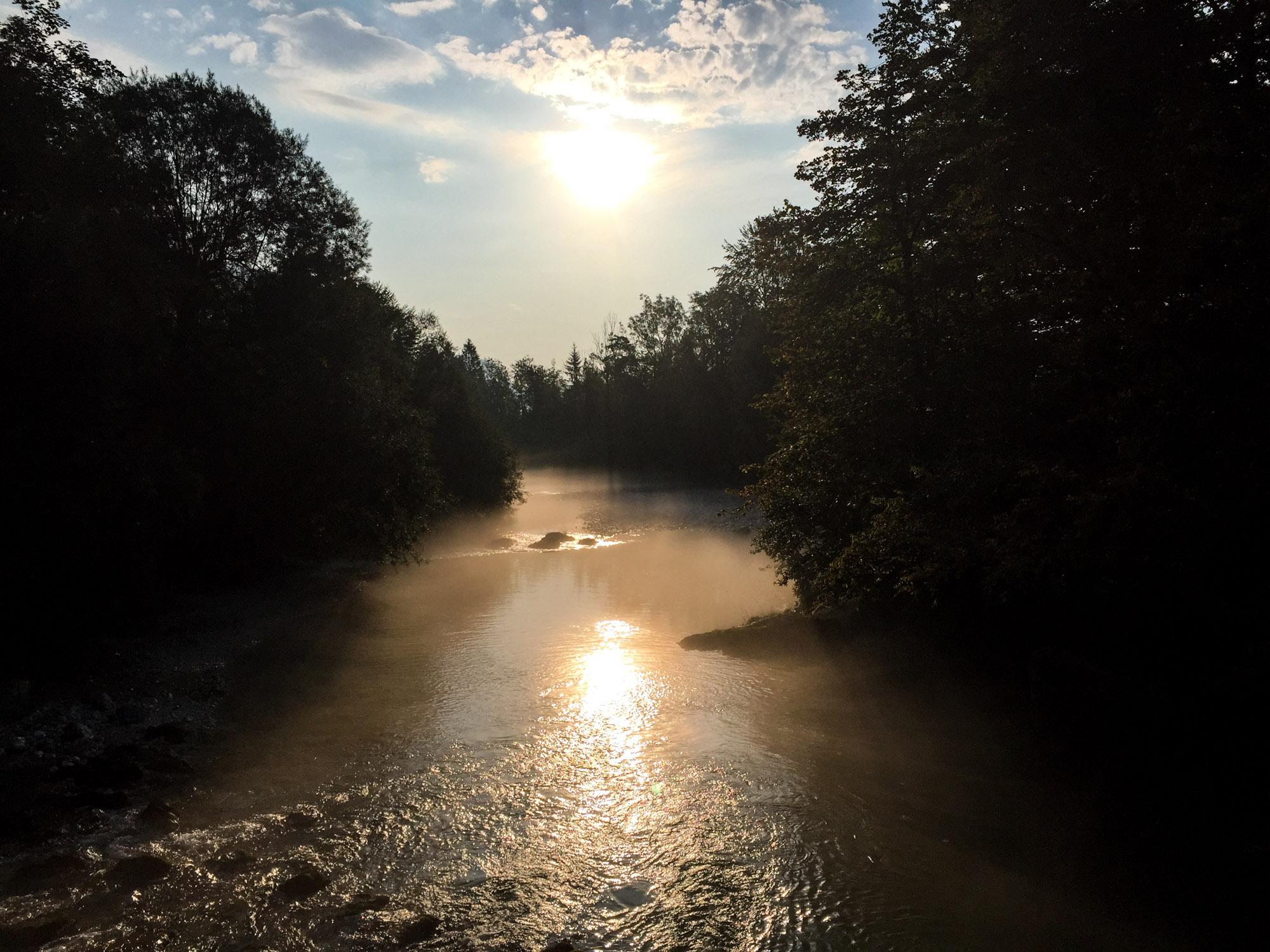 Morning dew over Savica stream