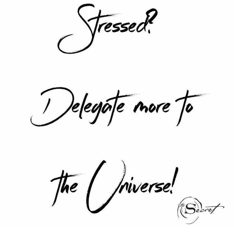the secret universe quote