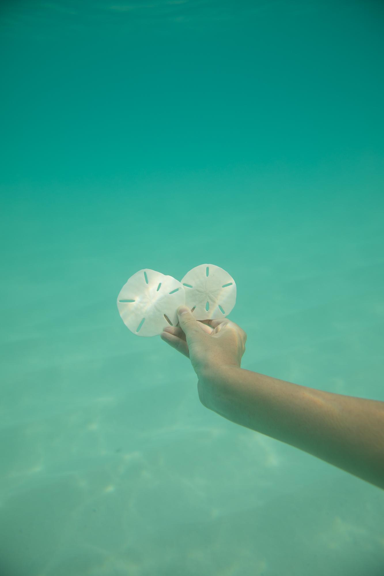 ockeydockey Underwater (6 of 6).jpg