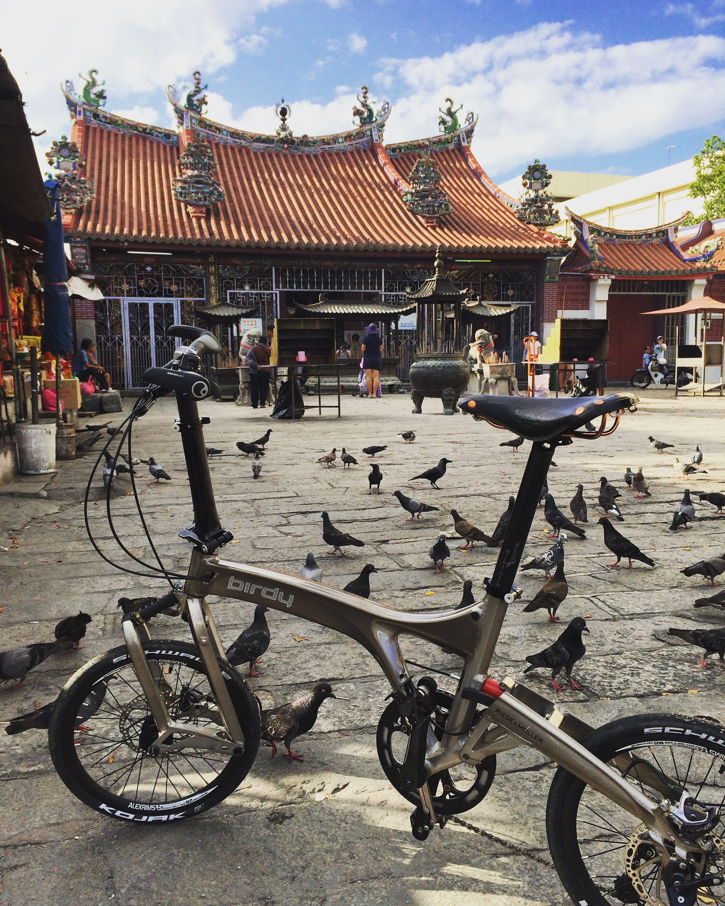 The Birdy special edition hanging out with a flock of birds in Penang.