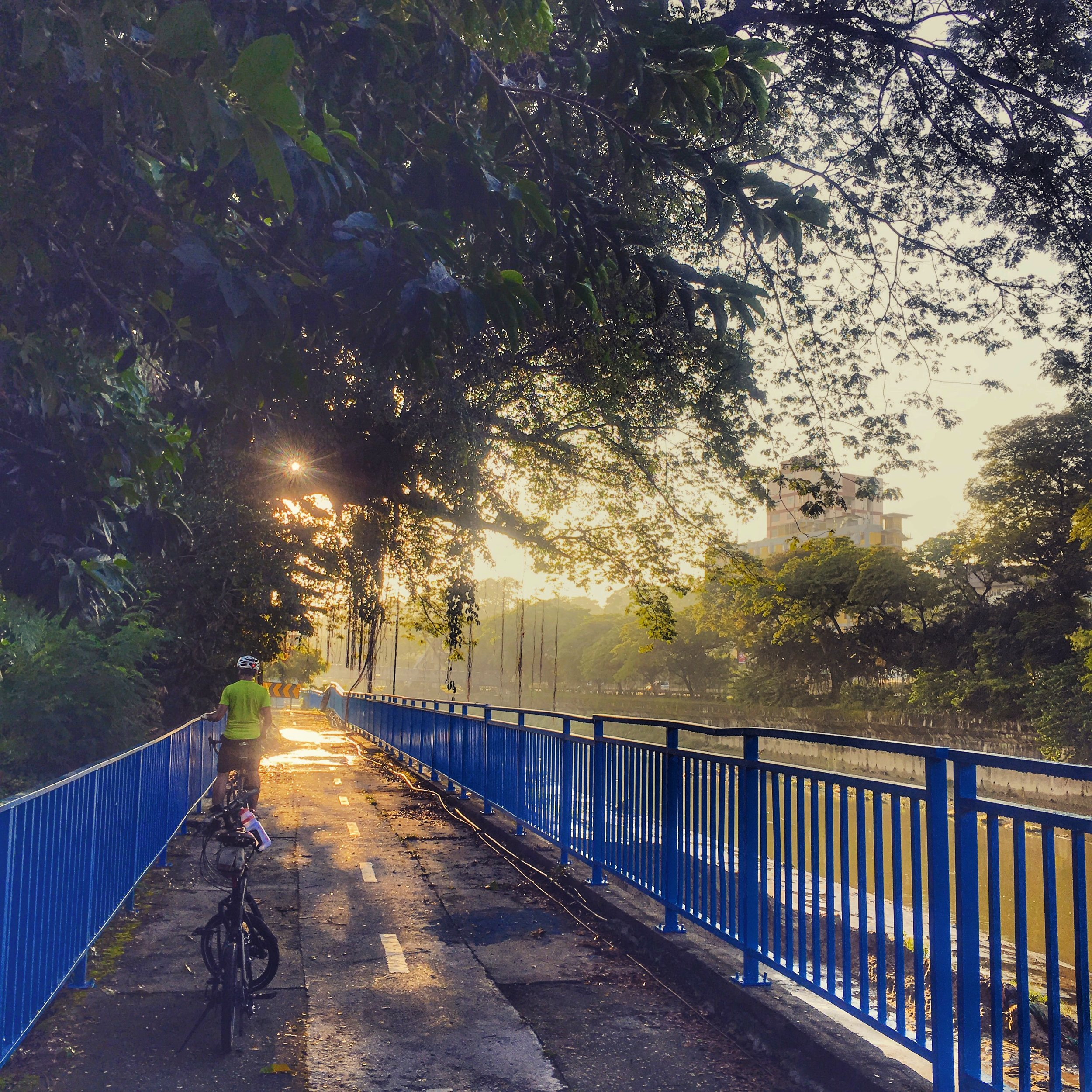 Early morning on the bike path.