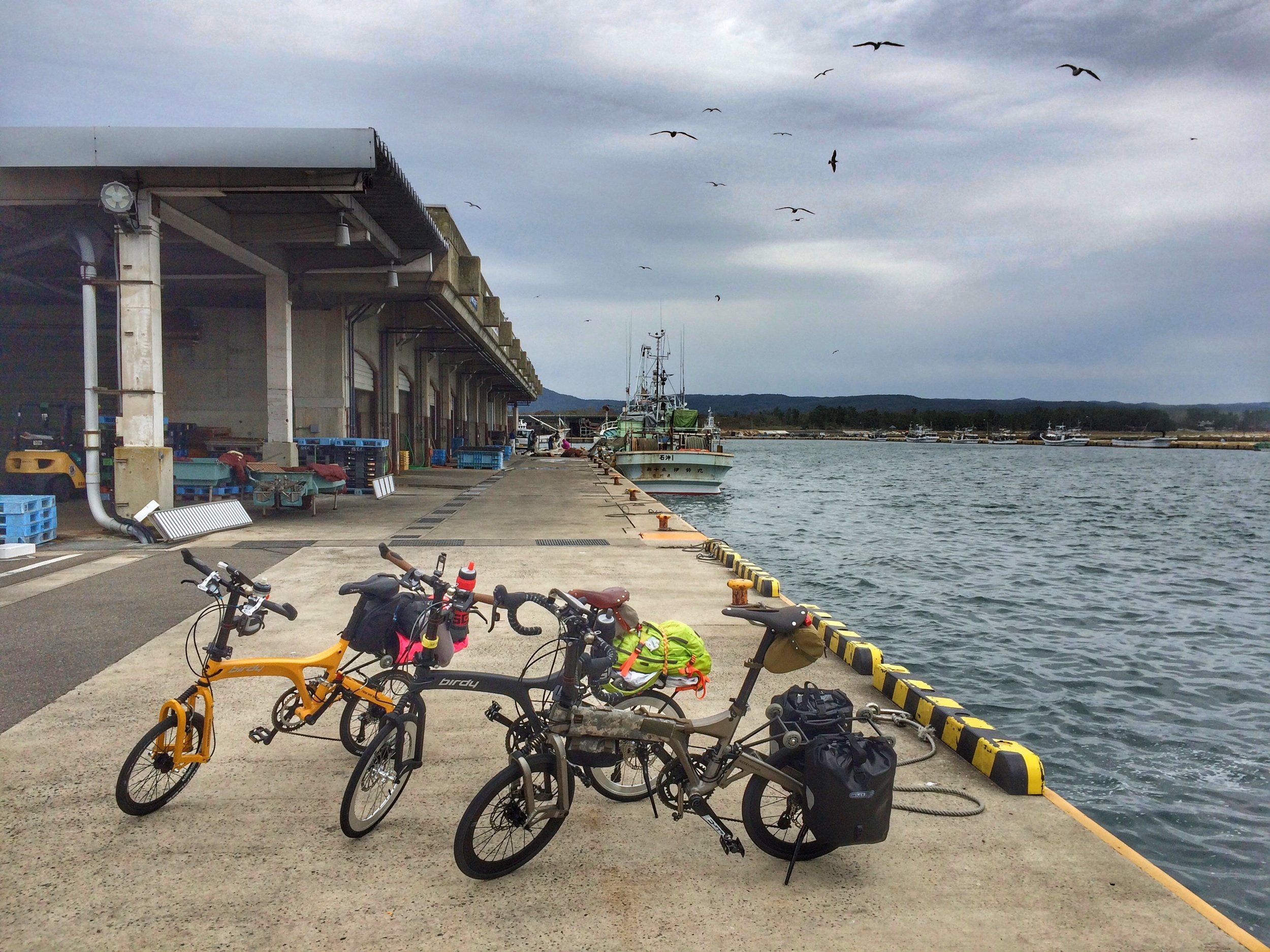 Taking a quick break at a fishing port, right before the rain started.